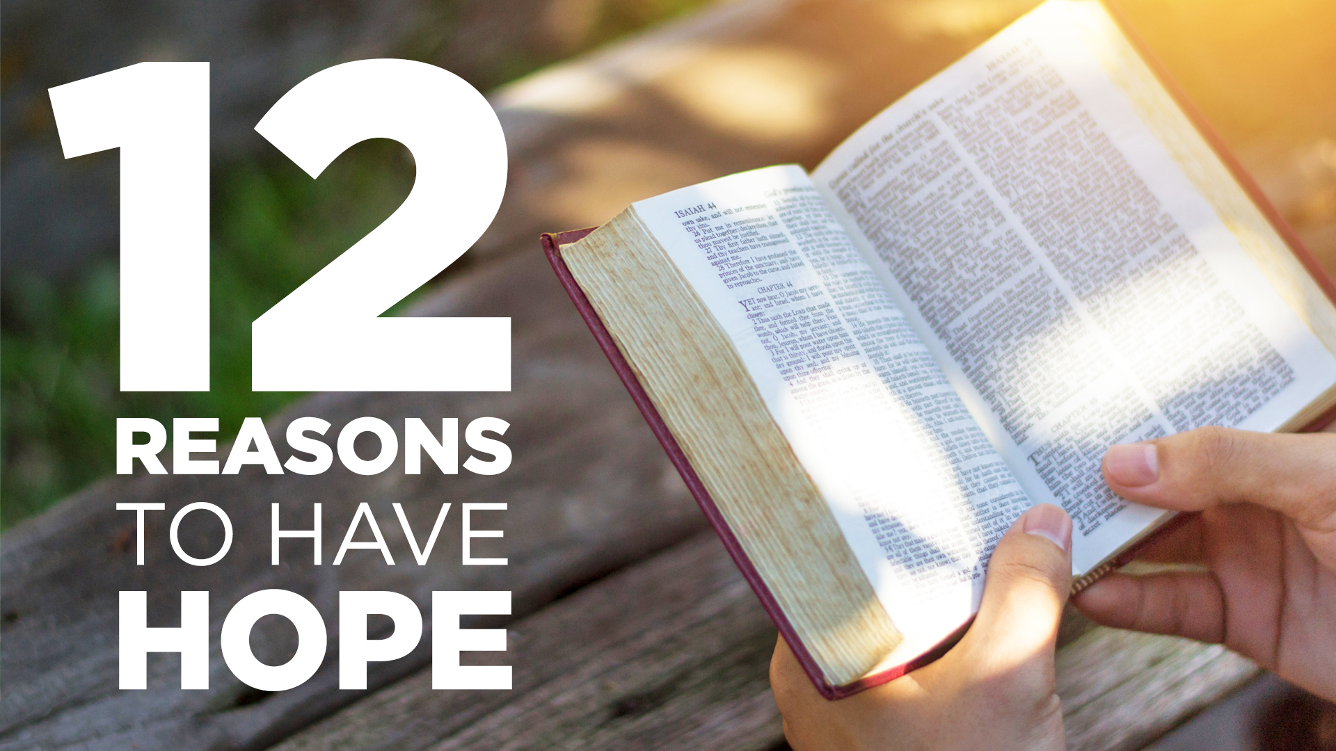 Read more about the article 12 Reasons to Have Hope